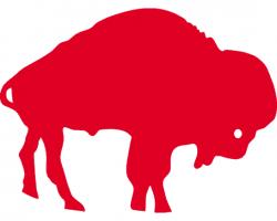 buffalo ny web design