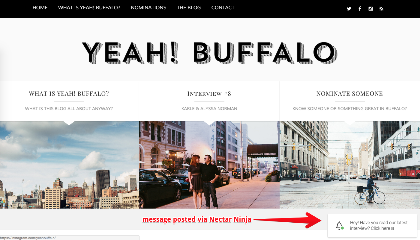 Nectar Ninja on Yeah! Buffalo
